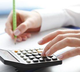 L'expert-comptable allemand: Présentation de la profession