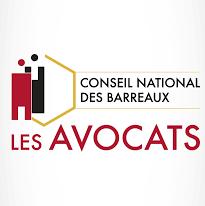 Avocat français en droit des affaires nous ayant confié une procédure judiciaire en Allemagne